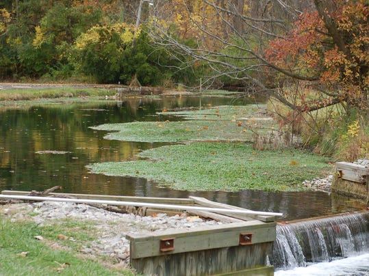 April brings solid steelhead trout fishing for Fish hatchery ohio
