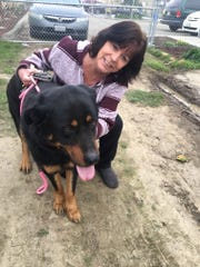 Cammie Johnson, of Ventura, pets one of four dogs she