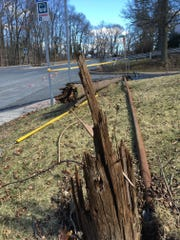 A utility pole downed by a tractor-trailer Monday.