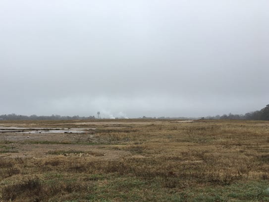 Over 100 acres of the former Louisiana Mill site or