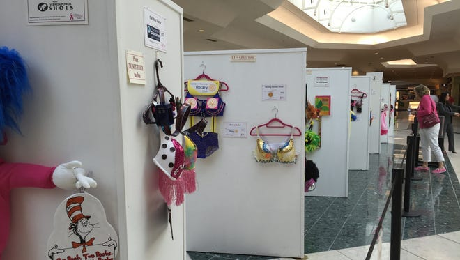 Imaginatively decorated bras will be on display at The Centre at Salisbury mall through May 31.