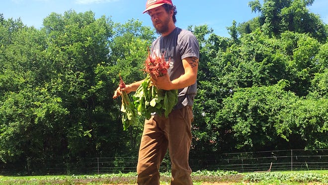 Second Harvest Food Bank of Middle Tennessee partners with eight local farms through its Farm to Families program.