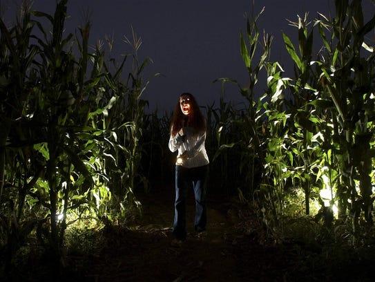 El campo de maíz embrujado de las granjas de Buckelew