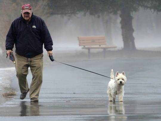 William Peraino, of Glen Rock, walks Reily, his six