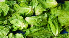 An E. coli outbreak has led to the CDC to warn Americans to avoid romaine lettuce and JBS USA to recall close to 100,000 pounds of ground beef.