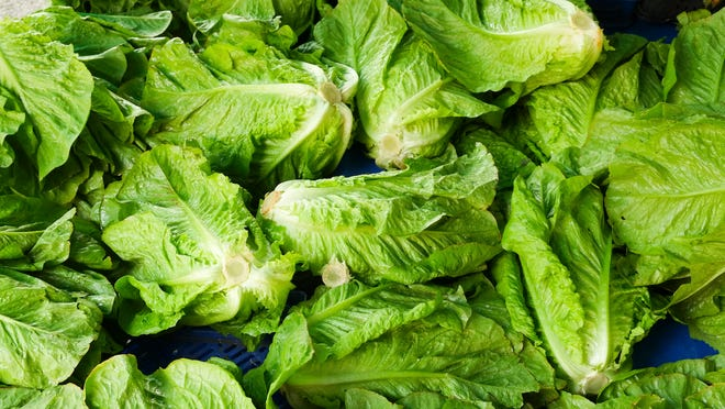 U.S. health officials are telling people to avoid eating romaine lettuce because of an E. coli outbreak that has sickened 32 people in 11 states.