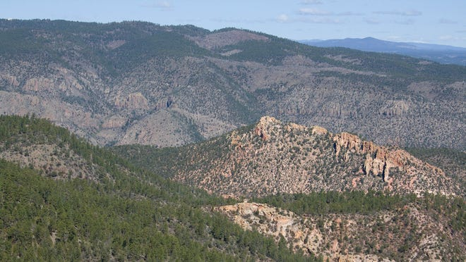 Gila National Forest in southern New Mexico.