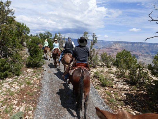 Late this summer, the brand new rimside Canyon Vistas Mule Ride was unveiled at the South Rim of the Grand Canyon.