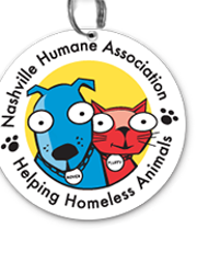 Each week we feature a new adoptable pet as our Nashville Humane Association Pick Of The Litter
