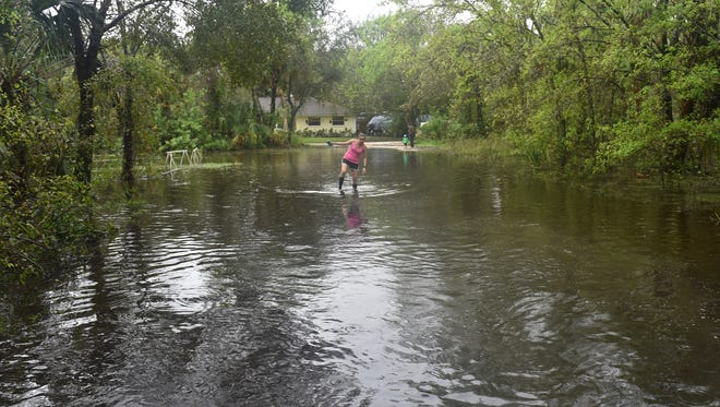 Morgan Jaap, 25, wades through her father's five acres of flooded property in the 3700 block of 11th Street Southwest in Vero Beach on Oct. 5, 2017, after rain from several tropical systems saturated the Treasure Coast.