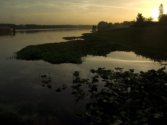 The sun peeks over the trees along the Caloosahatchee River at the W.P. Franklin Lock Recreation Area in Alva.