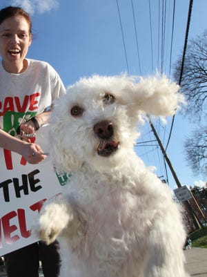 In this file photo, a pet owner and her dog are seen at rally in support of the Hi-Tor shelter in 2012.