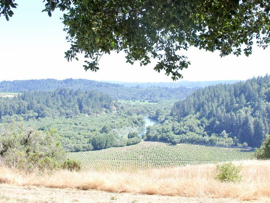 The Russian River dawdles in the distance, as seen from a hilltop vineyard at the MacMurray Estate Vineyards ranch in Sonoma County.