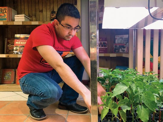 Courtesy Photo   Adan Delval, the new store manager for New Mexico State University's Chile Pepper Institute, is a former ASSURED student and was raised in Columbus, N.M.