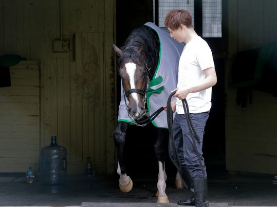 Assistant trainer Masaaki Minamida leads Epicharis from his barn after it was announced that the horse was scratched from the 149th running of the Belmont Stakes horse race, Saturday, June 10, 2017, in Elmont, N.Y. (AP Photo/Peter Morgan)