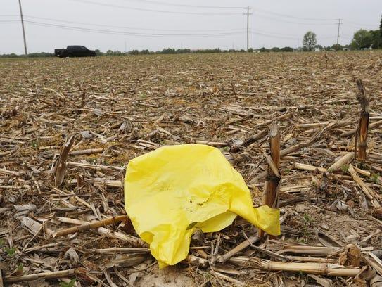 A plastic bag among the corn stubble Monday, May 14,