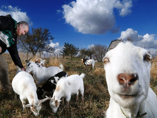 Veteran wants to donate goats to Afghans