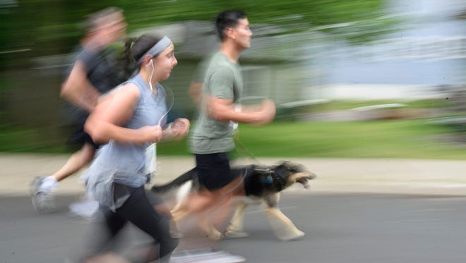 Runners and their dog compete in a 5K.
