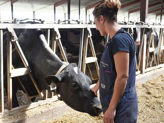 Abby Driscoll pets her cow, Amy, who won an honorable