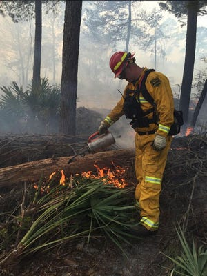 Control burns help to prevent wildfires.
