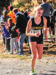 Greencastle-Antrim's Lauren Hirneisen finished 12th in 19:32 in the PIAA Class 2A Cross Country Championships at the Hershey Parkview Course on Saturday, Nov. 5, 2016.