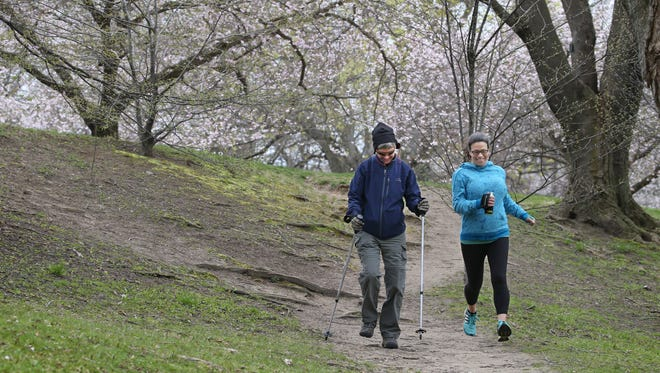 Democrat & Chronicle reporters Patti Singer, left, and Victoria Freile look at walking vs running to help stay fit, Monday, April 25, 2016 in Highland Park in Rochester.