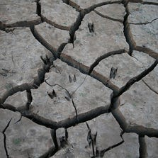 LAKEHEAD, CA - AUGUST 30:  Animal prints are visible in dry cracked earth on the banks of Shasta Lake on August 30, 2014 in Lakehead, California.