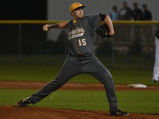 Hendersonville sophomore pitcher Cameron Hansen struck