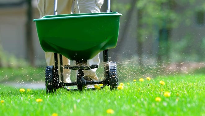 Over-fertilizing can do more harm than good, so read instructions carefully.