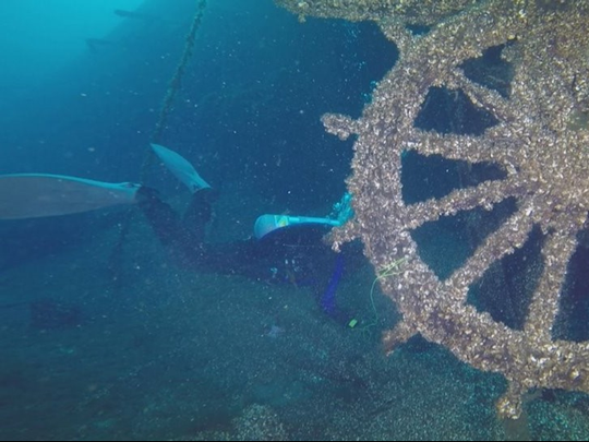 During one of the dives to the Clifton wreck site,