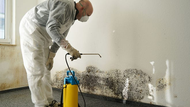 Mold and mildew are everywhere in our environment and their favorite food is building materials, such as drywall, flooring and carpeting.