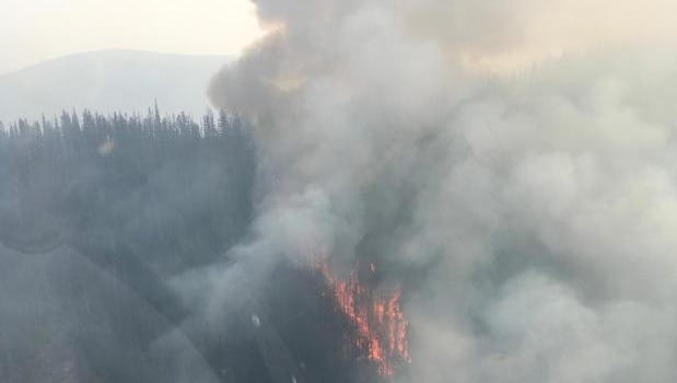 Aerial view of Lolo Peak Fire west ridge on Aug. 10.