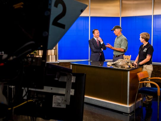 Cincinnati Zoo and Botanical Garden director Thane Maynard talks to Fox 19 Meteorologist Frank Marzullo about Donni, during his first on-air appearance Friday, July 1, 2016 at Fox 19's studio.  Senior cat ambassador trainer Alicia Sampson provided Donni's latest stats and progress.