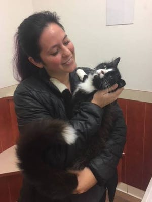 Squishy the cat is reunited with his owner.
