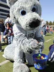 The Wolf Pack mascot gets into the Easter spirit during a previous year's Mackay Stadium egg hunt.