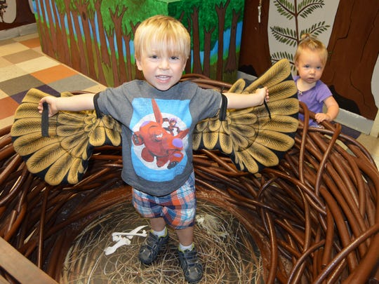 Noah Godeaux (3) and his sister Abigail play in the eagle's nest at T.R.E.E. House Children's Museum.(Sept. 24, 2016)