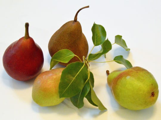 The greatest variety of pears is available in October.