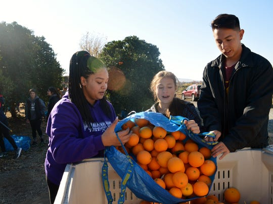 Meraiah Brown, left, is a junior at Mission Oak High School in Tulare. She and others volunteered to pick oranges with the Harvesting Hope program.