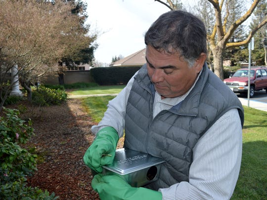 Armando Gallegos, a Bayne Pest Control applicator sets