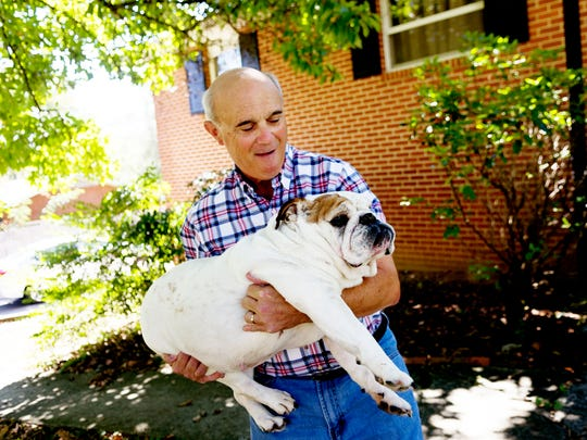 Oak Ridge football coach Joe Gaddis carries his pet bulldog Izzy, 10, at his home in Oak Ridge on Tuesday, Oct. 3, 2017. Gaddis has six bulldogs of all different ages that he has raised since they were pups.
