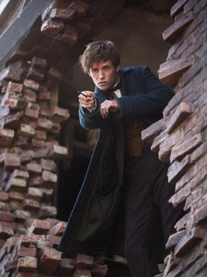 "Eddie Redmayne in ""Fantastic Beasts and Where to Find Them"""