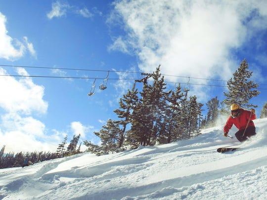 Showdown skier 2.jpg