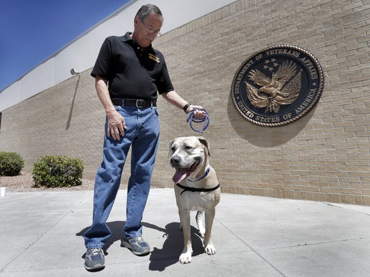 MAIN Canine Wounded Heroes.jpg