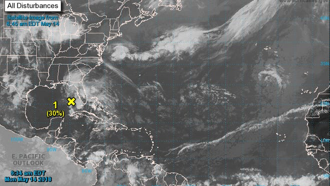 A disturbance in the Gulf of Mexico is expected to make for a soggy week in Tallahassee.
