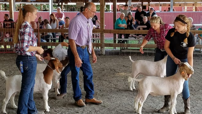 From left, Sarah Wessel, Judge Speedy Fought, Alexis Lansford and Kristen Feeser display for the Goat Showman/Fitter Award.