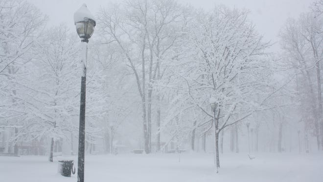Rec Park in Binghamton during the March 2 snow storm.