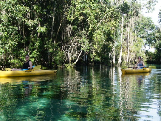 Kayaking around the Springs in Citrus County is another