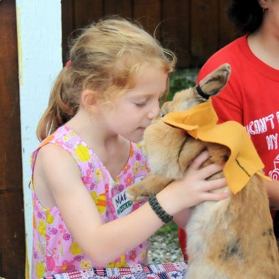 Maeve McGlynn of Kent cuddles with Hop the rabbit on