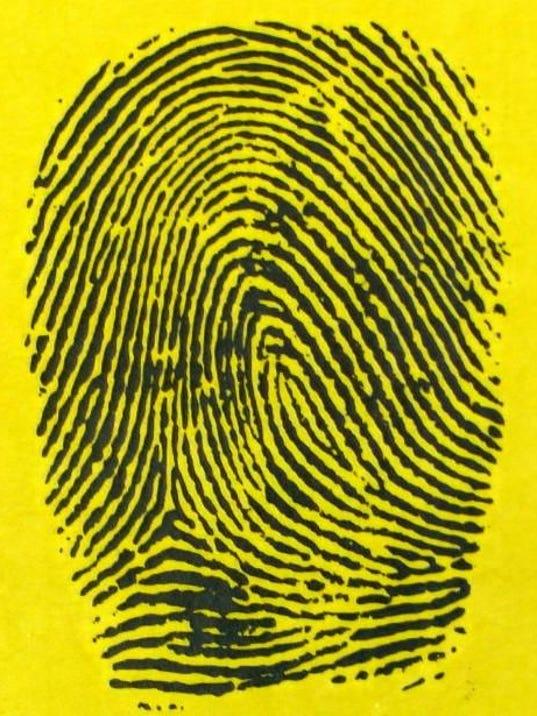 Crime report image