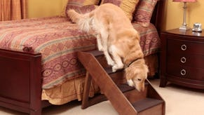 Stairs for older pets are among the products made by Solvit.